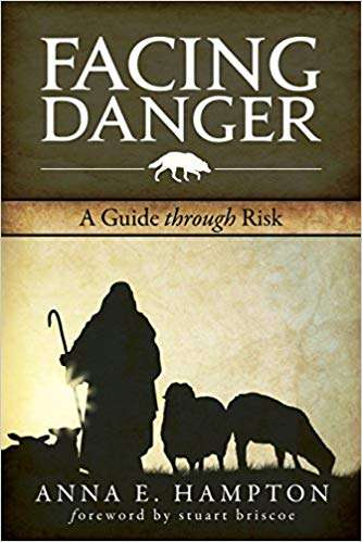 Facing Danger: A Guide Through Risk